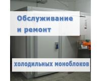 Ремонт и обслуживание холодильных моноблоков